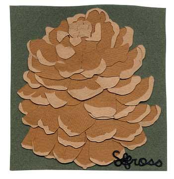 021207-pinecone.jpg