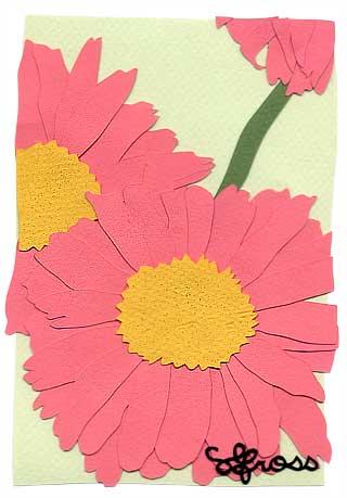 022207-daisy.jpg
