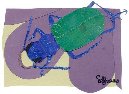 041007-beetle.jpg