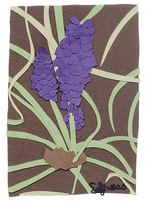 042307-grapge-hyacinth.jpg