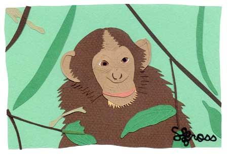 051007-monkey.jpg