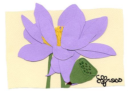 073107-lotus-flower.jpg