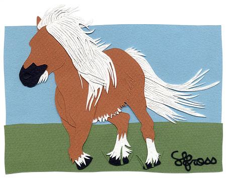 080607-pony.jpg
