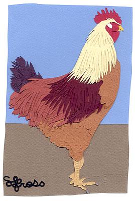082107-rooster.jpg