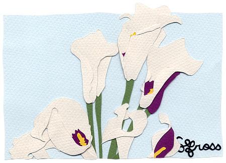 100207-calla-lily.jpg