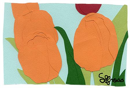 101707-tulip.jpg