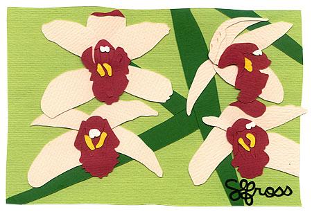 101907-orchid-grow.jpg