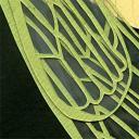 102307-cicada-detail2.jpg