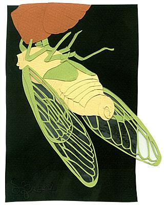 102307-cicada.jpg