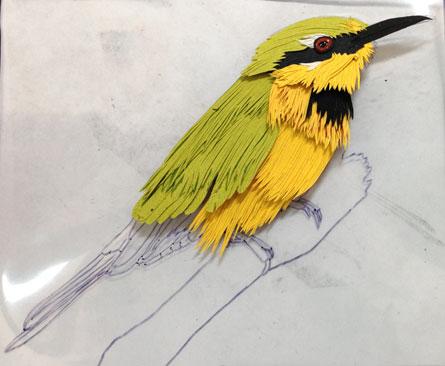 062713-little-bee-eater-status