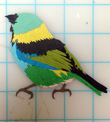 032214-green-headed-tanager-status-scale
