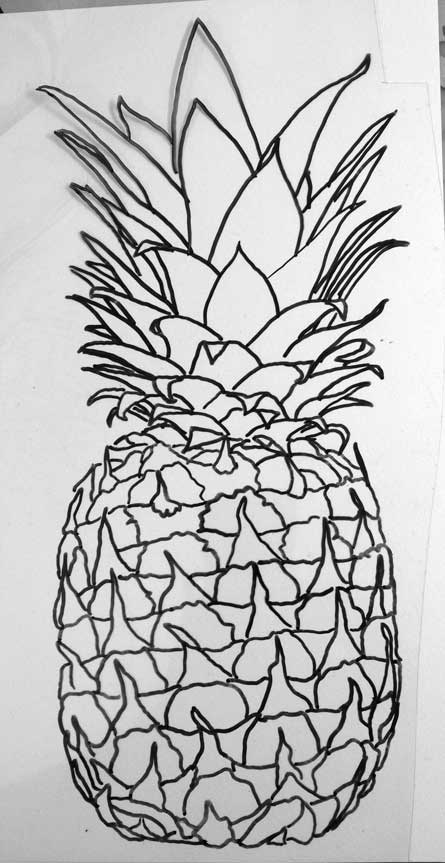 042114-pineapple-drawing