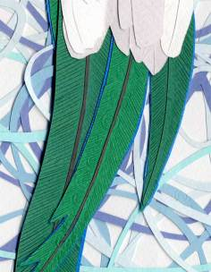 093014-resplendent-quetzal-d1