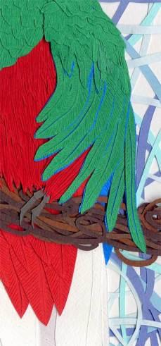 093014-resplendent-quetzal-d2