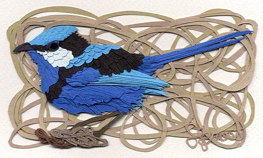 020115-splendind-fairy-wren