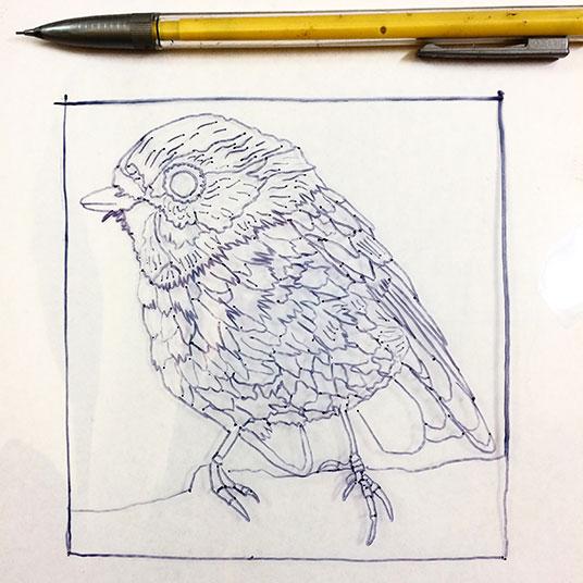 012817-pink-robin-drawing